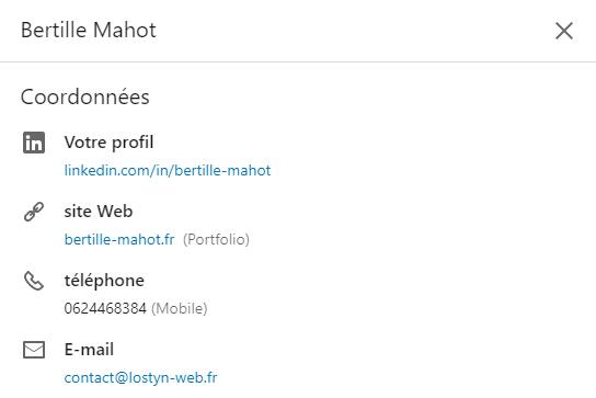 Comment optimiser son profil LinkedIn - Lostyn Web